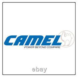 Batterie de loisirs à décharge lente Camel DC31 110Ah pour Camping-cars, Bateaux
